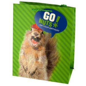 36  Pieces Per Pack Of  Medium Squirrel Birthday Gift Bag ][wholesales purchase|hoodmat.com