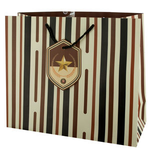 24  Pieces Per Pack Of  Large Striped Gift Bag with Star Tag ][wholesales purchase|hoodmat.com
