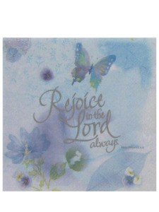 reflection 16 count 12 7/8 x 12 7/8 inch napkins