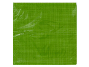 Texture Citrus Green Napkins Set