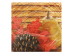 Harvest Napkins Set