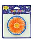 4pk daisies coastr 051